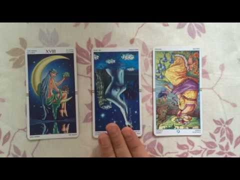 numerology reading - http://www.gregoryscott.com What energy will you be working with today? Find out in this free tarot and numerology reading for 27 October 2014 Tarot Card and...