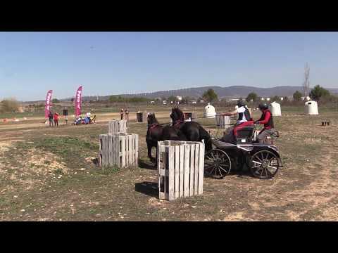 I Fase Cto Navarro Enganches Obstáculos 240319 Video 9