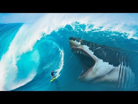 התמונות שמוכיחות: כריש פרהיסטורי מפלצתי במשקל 100 טונות עדיין חי במצולות?