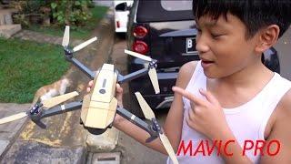 Video My Mavic Pro DRONE experience MP3, 3GP, MP4, WEBM, AVI, FLV Agustus 2017