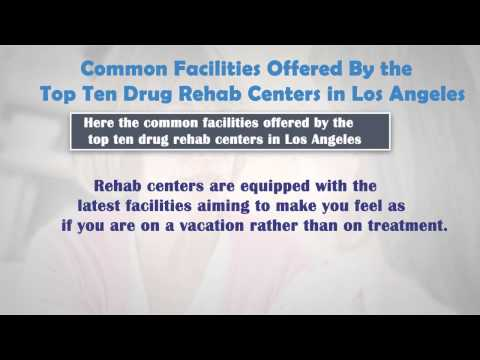 Drug Alcohol Addiction Rehab Treatment and Recovery Services