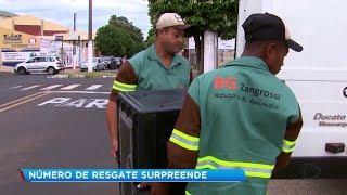 Número de ocorrências envolvendo resgate de animais preocupa a prefeitura de Marília