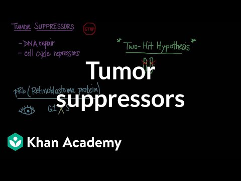 Tumor Suppressors Video