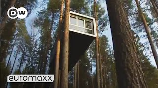 Designer Tree Hotel in Sweden