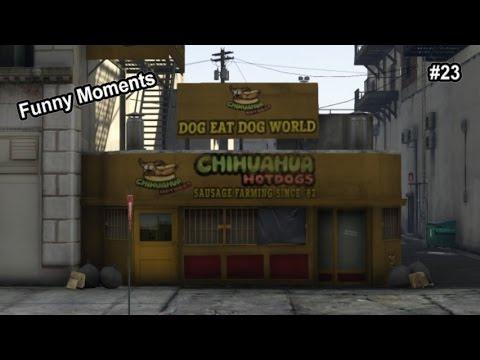 GTA 5 – Funny Moments #23 – Chihuahua Hotdogs, Boarder Patrol, Giant Dish, Parachute Denied.
