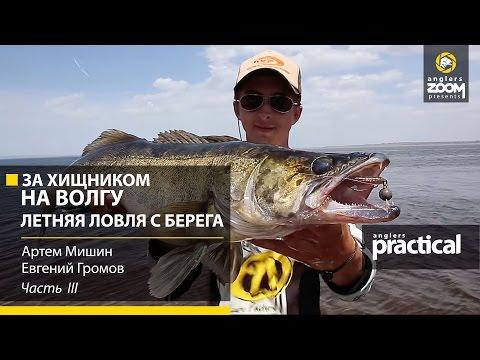 судачий берег рыболовная база официальный сайт