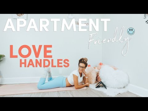 Fitness - Apartment Friendly LOVE HANDLE Blasting Workout