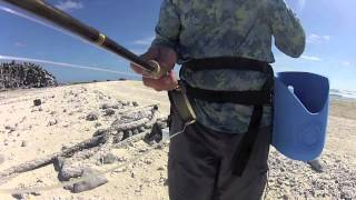 Fly fishing the surf at Clipperton island.