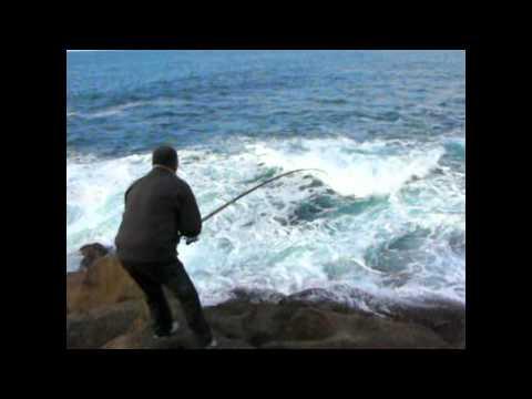Pesca de Sargos en acantilados gallegos con José Afonso (campeón del mundo pesca)