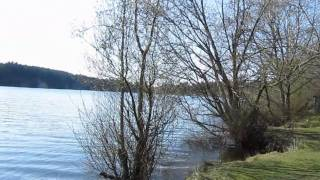 Bellingham (WA) United States  City new picture : Lake Padden Park in Bellingham, WA, USA