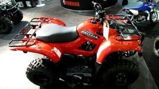 5. 2013 Yamaha Grizzly 300 Multi Purpose ATV - 2012 Salon National du Quad - Off Road Vehicles Show
