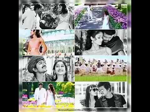 Video Ilayathalapathy Vijay Mass Movie Song Sean's 4K HD Version.... download in MP3, 3GP, MP4, WEBM, AVI, FLV January 2017