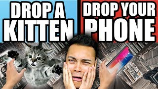 DROP A KITTEN OR DROP YOUR PHONE ??? (Would You Rather)