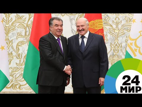 Рахмон: Лукашенко в Таджикистане любят и смотрят его по телеканалу «МИР» - МИР 24 - DomaVideo.Ru