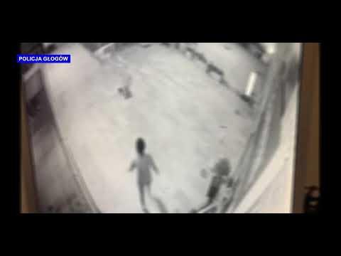 Wideo: Wyładowała swoją agresję dewastując drzwi i wybijając szyby
