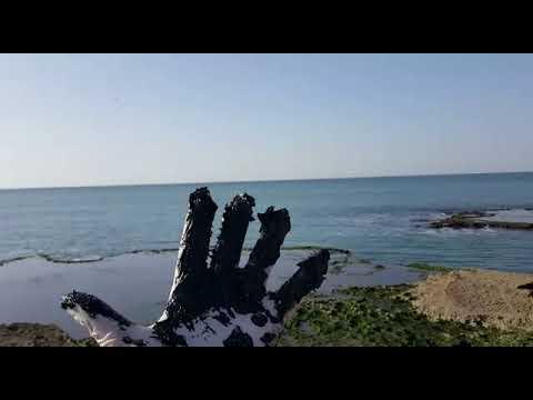 תחקיר אסון הזפת בחופי ישראל