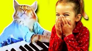 KIDS REACT to Keyboard Cat