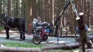 Video Horse logging - timber trailer HD MP3, 3GP, MP4, WEBM, AVI, FLV November 2017