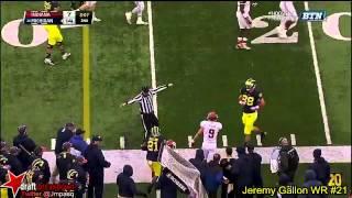 Jeremy Gallon vs Indiana (2013)