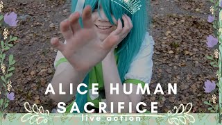 Video [HVC] Vocaloid Live Action - Alice Human Sacrifice MP3, 3GP, MP4, WEBM, AVI, FLV Februari 2019