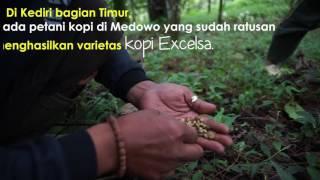 Teaser Kediri Coffee Party and Less Cash Society @ngopingopi.net 2016
