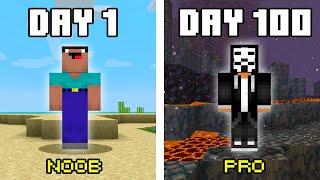 100 Days in Minecraft Noob Vs Pro Challenge!