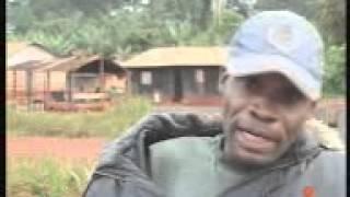 Quels droits pour les pygmées baka dans les parcs au Cameroun?