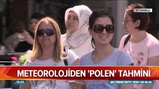 Meteorolojiden polen tahmini - Atv Haber 17 Mart 2019