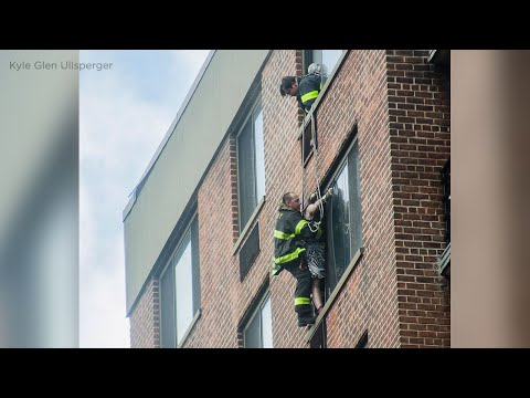 FDNY saves woman with heroic, rare rope rescue