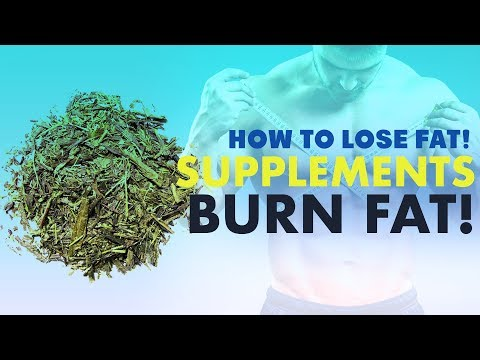 Fat burner - BEST Supplements For Fat Loss - How To Lose Fat 101 (FOR REAL) #13