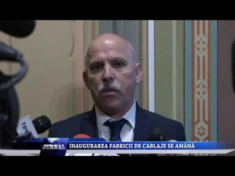 INAUGURAREA FABRICII DE CABLAJE SE AMANA