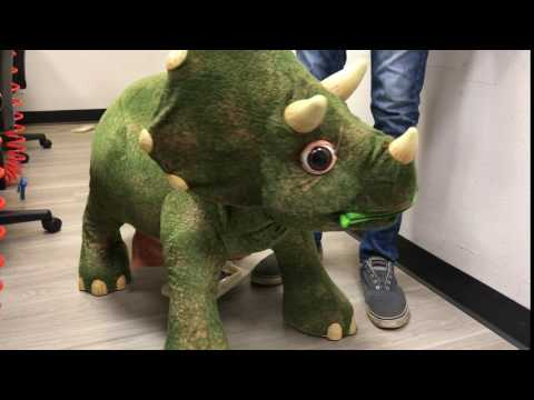 Anything With a Power Button: Sarah the Triceratops