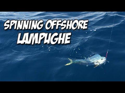 Lampughe a Spinning видео