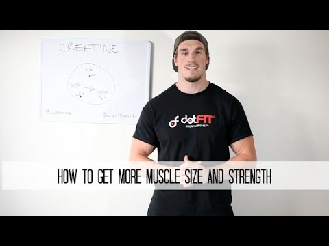 How To Gain Size and Strength With Creatine – Build More Muscle