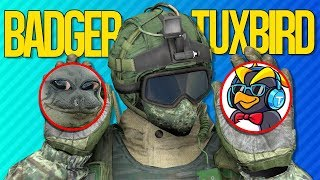 THE BADGER PENGUIN SHOWDOWN | Rainbow Six Siege