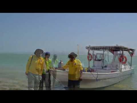 زيارة جزيرة أم النمل  الكويت
