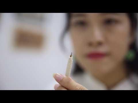 《珠江紀事》紀錄片精彩預告