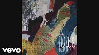 Hozier - Arsonist's Lullabye (as heard on 'The Walking Dead' [Audio])