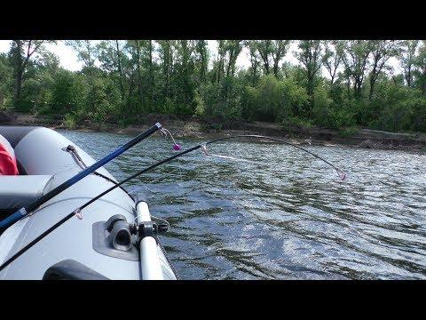 Наконец то Крупный ЛЕЩ пошёл. Ловля леща летом на кольцо. Рыбалка на леща на реке Волга 2018 (видео)