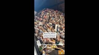 Zwolnili go zaraz po ujawnieniu, ile plastiku dodają do paszy dla zwierząt