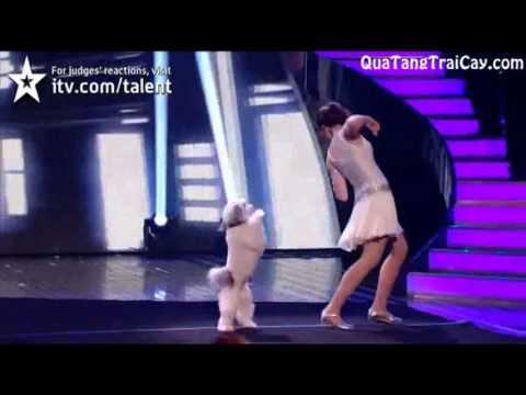 Cô bé vui đùa bên cún yêu làm khán giả sững sờ
