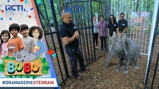 Download Video BUBU - Bubu Sudah Dibawa Oleh Petugas Pusat [13 OKTOBER 2017] MP3 3GP MP4