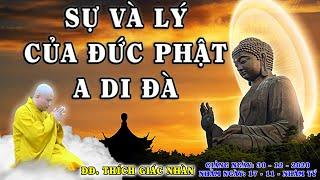 ĐĐ. THÍCH GIÁC NHÀN thuyết giảng SỰ và LÝ VỀ ĐỨC PHẬT A DI ĐÀ Ngày
