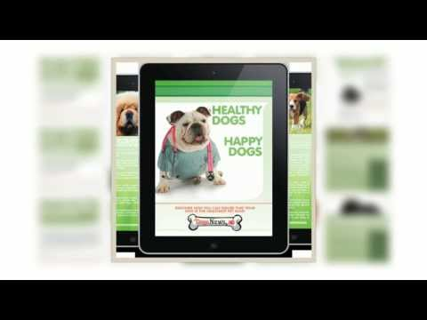 Video of TRIAL Healthy Dogs Happy Dogs