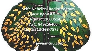 Seife Nebelbal Radio Program, Oct 11, 2013