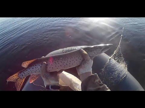 ловля рыбы осенью сетями