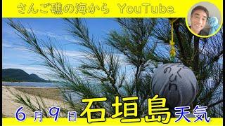 6月9日の石垣島天気
