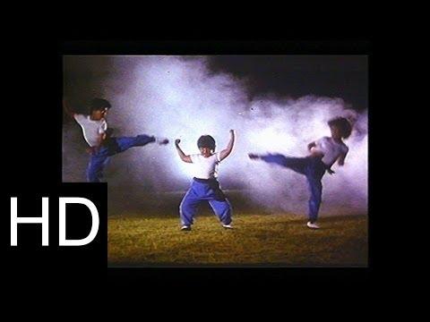 of kung fu 1972 hapkido escuela de kung fu 1972 historia de ricky