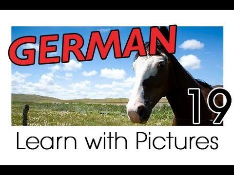 Learn German – German Farm Animals Vocabulary