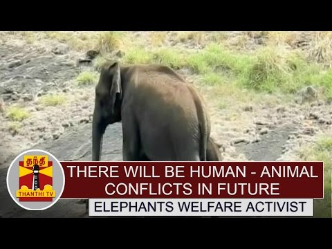 There-Will-be-Human--Animal-Conflicts-in-future-if-Encroachments-are-not-removed--EWA